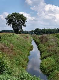 Ecosystem fresh water