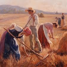 A Golden Harvest