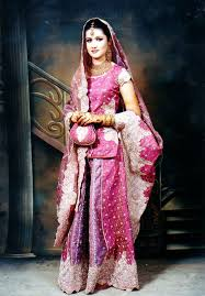 Classic Indian Wedding Dress ...