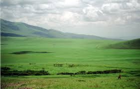 The Unending Plain