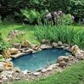 Staw - jak zrobić staw w ogrodzie : Weranda Country