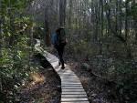 Trail Segments | Mountains-to-Sea Trail