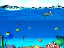 In The Depth ...