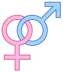 heterosexual-gender