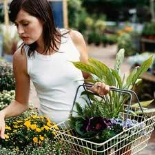 Woman buying plants at nursery