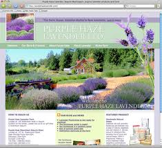 purple haze lavender website