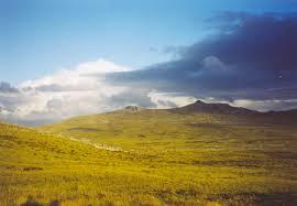 File:Upland.jpg - Wikipedia,