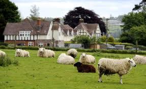 Wieś na sprzedaż