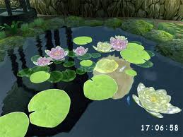 3D Pond screensaver 1.1