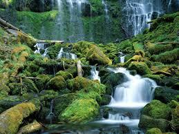 Proxy Falls, Cascade Range,