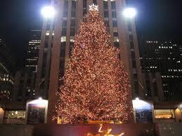 Go Green Christmas Tree