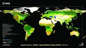 Effects of land cover ...