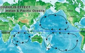 Trade winds are caused as a