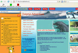 ... 'Dolphin Adventure' website